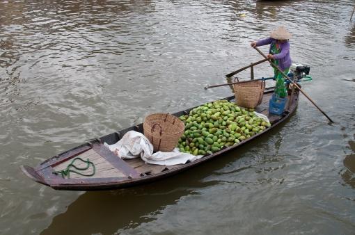 Mekong floating markets