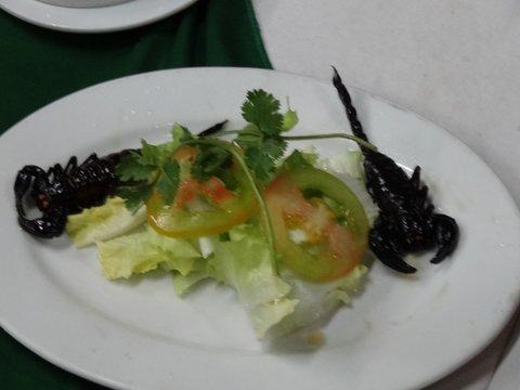 Freshly cooked scorpions!