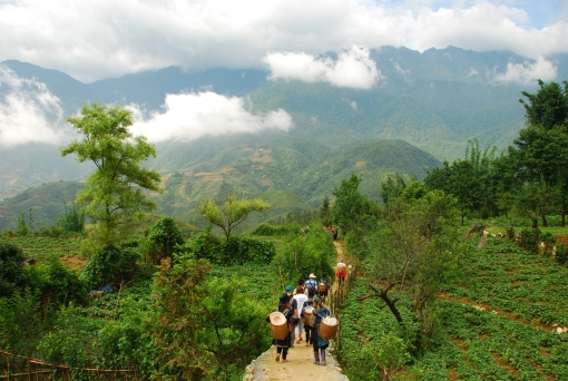 Out in the lush scenery of Sapa, much prettier out-of-season