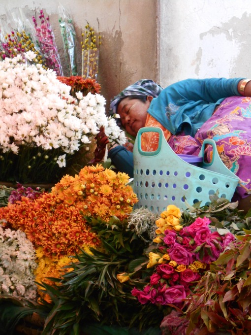 flowers make me sleepy